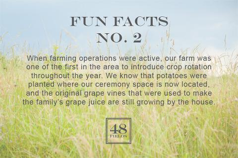 Leesburg-VA-Wedding-Barn-48-Fields-Fun-Facts-2