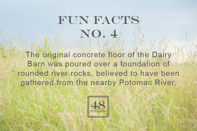 Fun Facts #4 | 48 Fields - Leesburg VA Wedding Barn