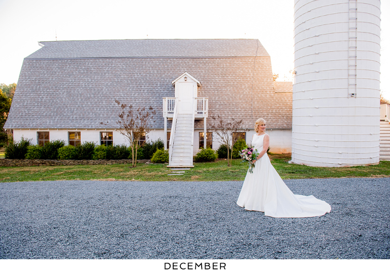 A gallery of favorite wedding photos by month at 48 Fields Farm in Leesburg VA | A Loudoun County barn wedding venue