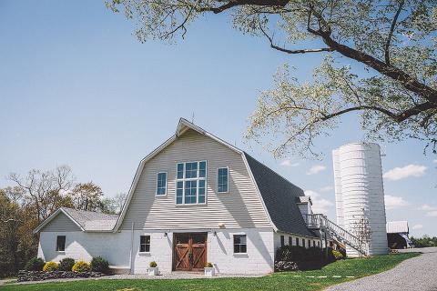 patriotic-all-american-barn-wedding-loudoun-county-leesburg-va-48-fields-farm-lynn-steve (1)