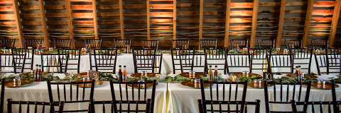 eco-friendly-wedding-ideas-northern-virginia-48-fields-farm