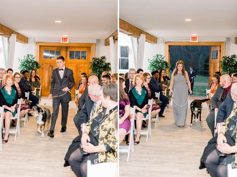 dog ring bearer dog flower girl - 48 Fields Wedding Barn | Leesburg VA